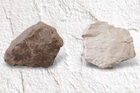 石灰岩 生石灰の比較