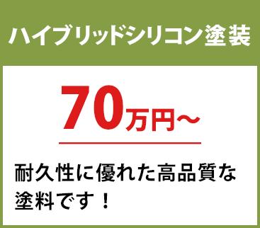 無機塗料 30坪 85.5万円