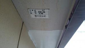 IMG_1614