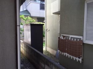 IMG_7301